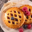 Biscuits with berry jelly  on plate — Stockfoto #66077833