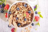 Granola with berries and yogurt — Stok fotoğraf