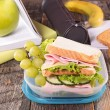 Lunch box with sandwich and grapes — Stock Photo #78128676