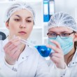 Group of the students working at the laboratory. — Stock Photo #68423591