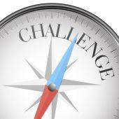 Compass challenge — Stock Vector