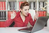 Angry screaming business woman working with compute — Stock Photo