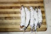 Fish capelin — Stock Photo