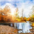 Mountain stream, forest autumn landscape at sunset — Stock Photo #63030207