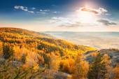 Beautiful view of autumn forest in the mountains — Stock Photo