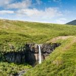 Beautiful waterfall Svartifoss in Iceland — Stockfoto #82510620