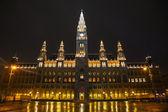 Rathaus building in Vienna, Austria — Stock Photo