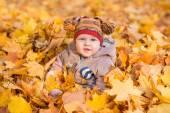 Cute baby in autumn leasves. — Fotografia Stock