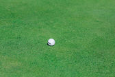 Golf ball on green course field — Stock Photo