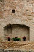 Geranium flowers in pot on brick wall — Stock Photo