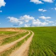 Dirt road and green field — Stock Photo #52321965