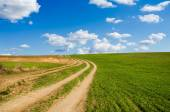 Dirt road and green field — Stock Photo