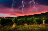 Gewitter mit blitz — Stockfoto