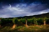 Fundo de noite — Fotografia Stock