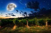 Night background — Stockfoto