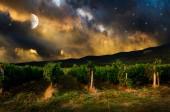 Noční pozadí. — Stock fotografie