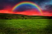 Beautiful field with rainbow at sunset or sunrise — Стоковое фото