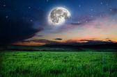 Beautiful night field background — Foto Stock