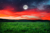 Beautiful night field background — Stock Photo