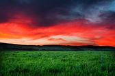 Night sky background — Stock Photo