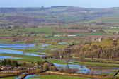 Flooded farmlands — Stock Photo