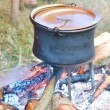 Cooking Pot on outdoor Open Fire — Stock Photo #76517441