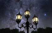 Night in the park — Stock Photo
