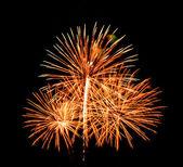Fireworks on black sky background — Stock Photo