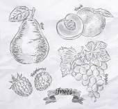 Fruit pear, peach, raspberry, grape vintage — Stock Vector