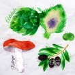 Vegetables watercolor rotkappe, artichokes, black olives — Stock Vector #57987981