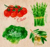 Vegetables watercolor lettuce, cherry tomatoes, asparagus, olives on kraft paper — Stock Vector