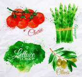 Vegetables watercolor lettuce, cherry tomatoes, asparagus, olives — Stock Vector