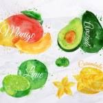 Exotic fruit watercolor mango, avocado, carambola, lime — Stock Vector #58582965