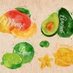 Exotic fruit watercolor mango, avocado, carambola, lime in kraft — Stock Vector #58583047