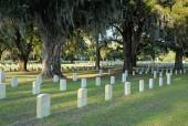 Beaufort National Cemetery — Stock Photo