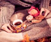 Tea and cookies on a plaid — Stock Photo
