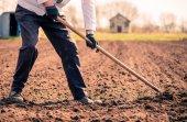 Senior man working on spring farm — Stock Photo