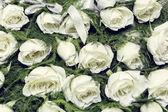 White Rose Boutonniere — Stock Photo