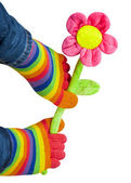 Legs in bright striped socks keep artificial flower — Stock Photo