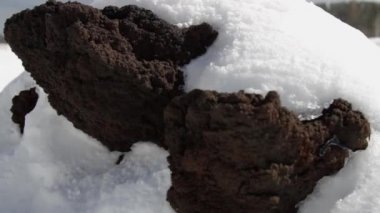 Slider shot on the Etna volcano, volcanic landscape with snow — ストックビデオ