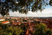 Looking over the rooftops — Stok fotoğraf