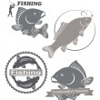 Emblems of carp fish — Stock Vector #69652343