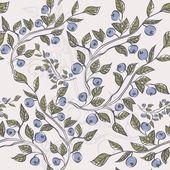 Blueberries — Stock Vector