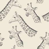 Žirafa — Stock vektor