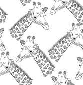 Giraffe — Stockvector