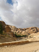 Road to Petra — Stock Photo