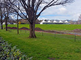 New Hagley Oval Cricket Pavilion  & Grass Bank Opened in Christc — Stock Photo