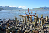 Governors Bay Ships' Graveyard at Low Tide — Fotografia Stock