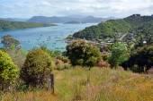 Waikawa Bay, Marlborough Sounds Hilltop View. — Stock Photo