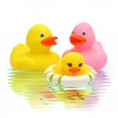 Rubber duck family on the water — Stock Photo